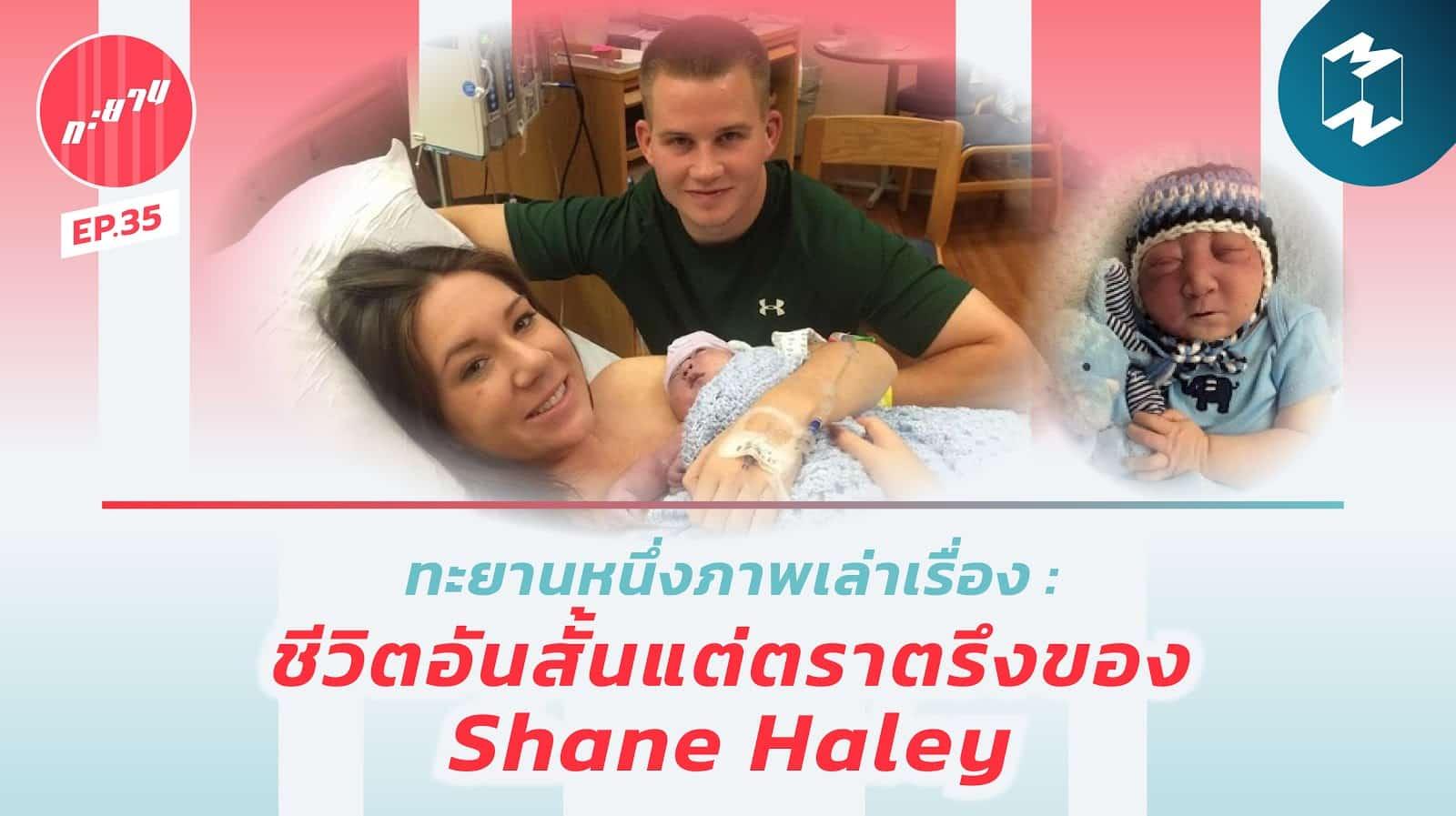 Shane-Haley